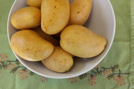 atulfo mango