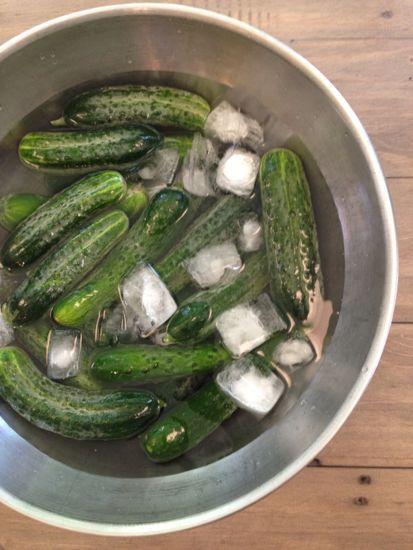 soak the cukes