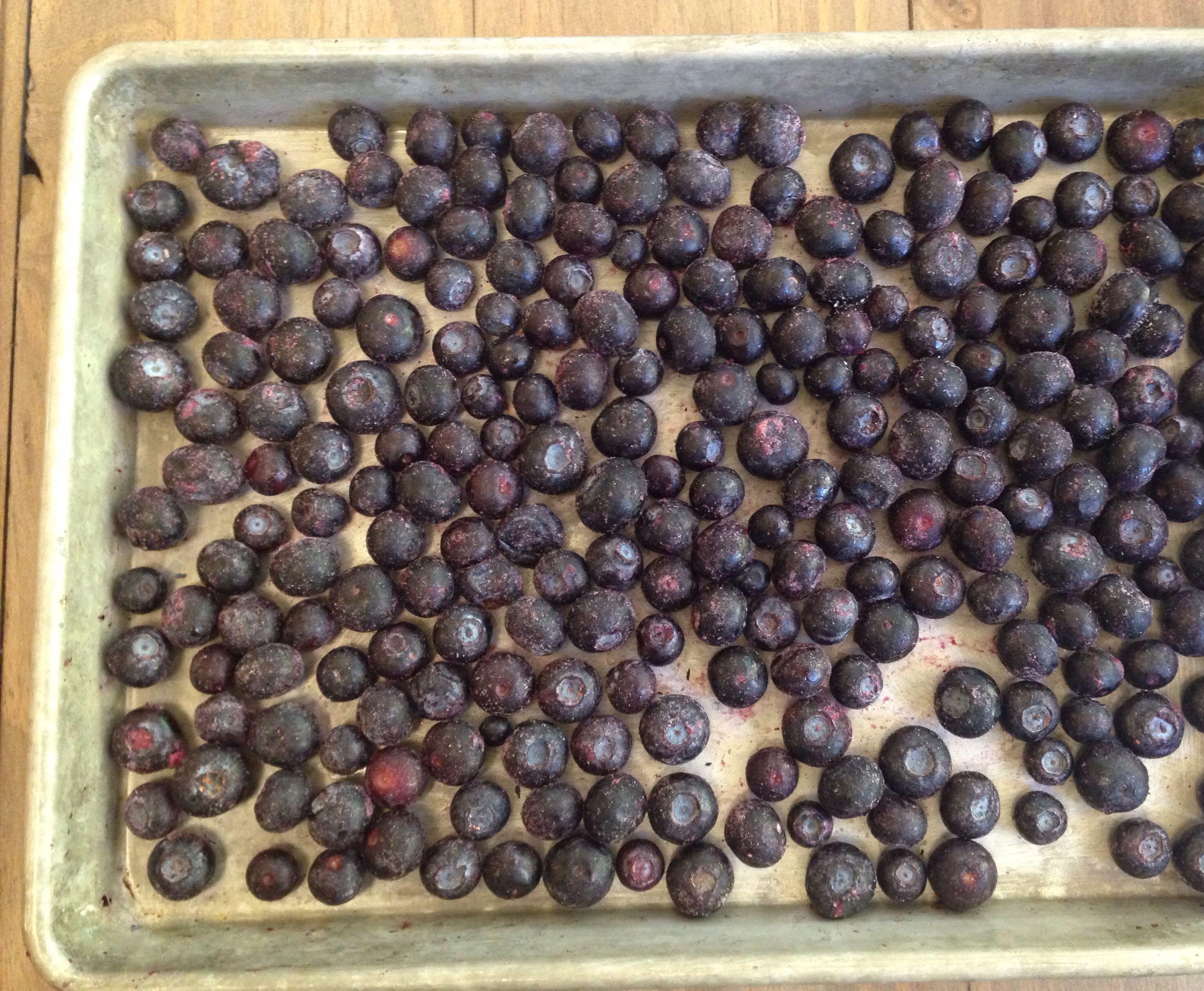 berries frozen