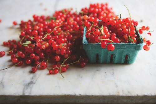 1 basket and a lot of  red currants edit copy